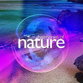 Harmonies of Nature