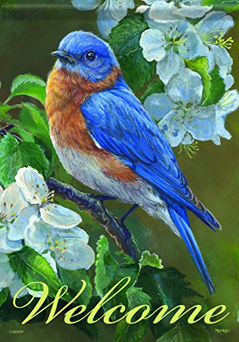 Carson Home Accents Flagtrends Classic Garden Flag, Welcome Bluebird Blossoms