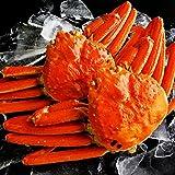 海夢 ズワイガニ 大サイズ 蟹味噌たっぷりの厳選品 ボイル済み 天然 ずわい蟹 姿 約600g×2尾