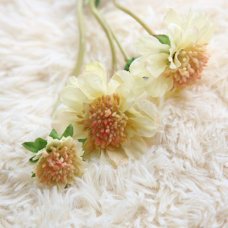 Kuupag 10Pcs Flor De La Orquídea Margarita para Ramos De Boda Fiesta En Casa Fiesta Mesa Decorativa