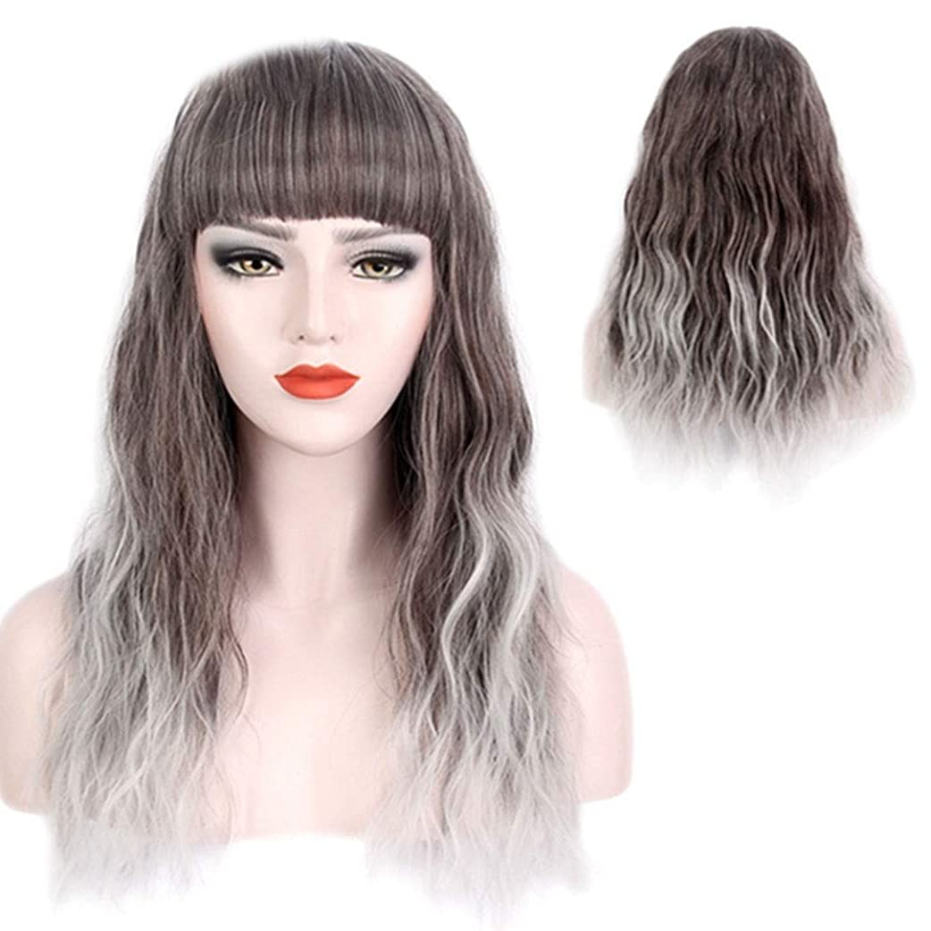 シャッターずるいさせるBOBIDYEE ファッション女性のシルバーグレーグラデーションロングカーリーヘアーコスプレかつら休日のかつら合成髪のレースのかつらロールプレイングかつら (色 : Silver grey)