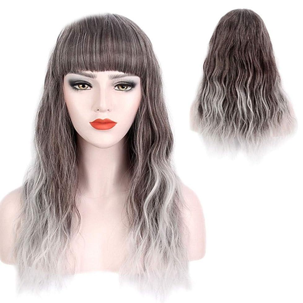 復活するロケット不完全BOBIDYEE ファッション女性のシルバーグレーグラデーションロングカーリーヘアーコスプレかつら休日のかつら合成髪のレースのかつらロールプレイングかつら (色 : Silver grey)