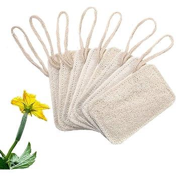 Bhjdok 天然ヘチマブラシ 野菜たわし 食器洗いスポンジ 台所用スポンジ クリーニング 抗菌 水切りマット 手を傷つけない 油汚れがつかない 8枚セット(H01)
