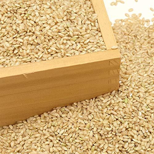 【令和2年度産】つがるロマン 玄米5kg 有機JAS・自然農法 (青森県 中里町自然農法研究会) 産地直送 ふるさと21