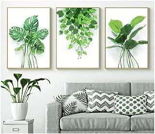wsqyf Decorative Painting Green Planting Decor Wall Canvas Art Kitchen Posters Monstera Frameless 60x80cmx3 (no Frame)