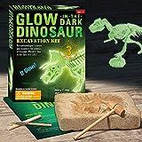 Dr. Daz Nachtleuchtender Dinosaurier Skelett Ausgrabungsset für Kinder Dino Knochen Ausgrabung...