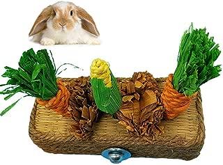 Hamiledyi Bunny Chews Carrot Rabbit Toy Chewable Carrot Corn