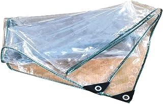 Lona Transparente Engrosamiento Protección contra la Lluvia al Aire Libre Protector Solar Película Impermeable Arandela de Tela PVC, 16 tamaños (Color: Transparente, Tamaño: 1x3.5m)