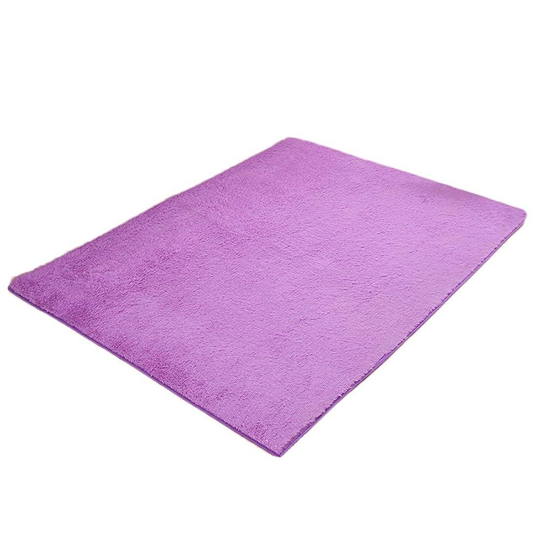 些細な痛いオーバーヘッドDream ラグ カーペット 洗える ラグマット シャギーラグ 絨毯 北欧シャギー 夏 冷房対策 滑り止め付き ふわふわ サラサラ 60cm×160cm (パープル)