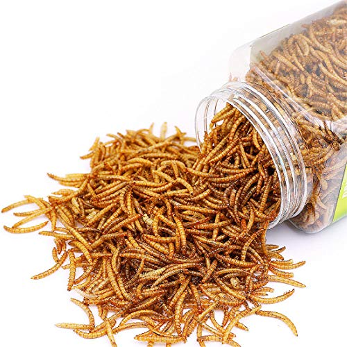 Reptile Food Dried Mealworms Pet Worms Food for Bearded Dragon, Lizard, Turtles, Chameleon, Monitor, Frog, Sugar Glider, Chickens, Ducks, Wild Birds, Fish, Hamsters and Hedgehogs (3.5 OZ)