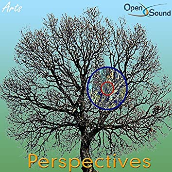 Focus (Perspectives)