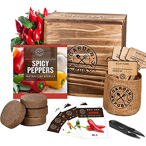 Indoor Pepper Seed Starter Kit – Pepper Growing Kit with 4 Non-GMO Hot Pepper...