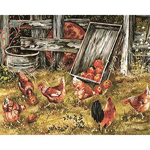 ZXDA Frameless DIY Kit de Pintura al óleo por números para Adultos Gallos Pintura de Animales por número Pintado a Mano Decoración de Pared Artcraft Único A14 50x65cm