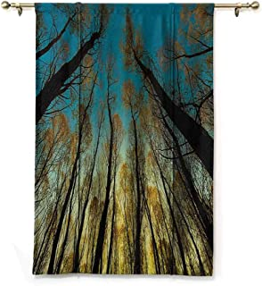 Andrea Sam Thermal Insulated Blackout Window Curtain Forest,Rural Scenery with Trees Reaching Out to Sky at Sunrise Nature Pastoral Image,Yellow Blue Black,36