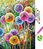 DIY 5D Diamante Pintura Kits, Diamond Painting Completo Bordado Punto de Cruz Diamante Cra...