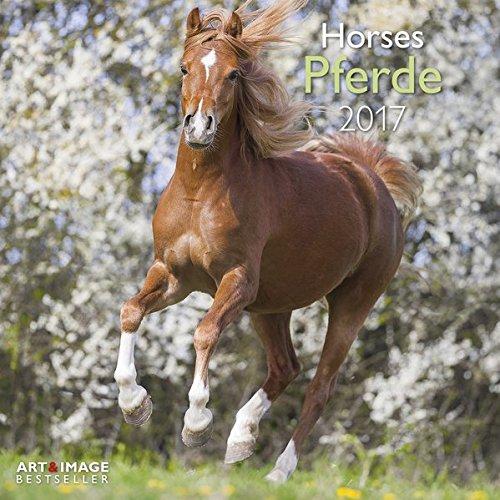 Pferde 2017 - Tierkalender 2017 , Broschürenkalender, Wandkalender, Pferdekalender  -  30 x 30 cm