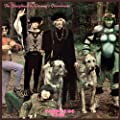 Doughnut in Granny's Greenhouse by Bonzo Dog Band