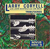 Tributaries by Larry Coryell (1990-02-08)