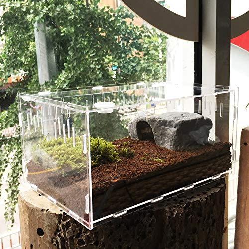 Vinnykud Mini Terrarium Transportbox,Reptil Fütterungsbox aus Acryl, Tragbarer Reptilienzuchtbox Transparent Reptil Zuchtfall für Spinnenechsen, Eidechse, Skorpion, Tausendfüßler, Käfer