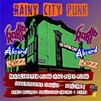 Rainy City Punks (Manchester Punk & Post Punk Inde [12 inch Analog]