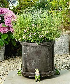 Plant Pot Feet Sleeping Gnome