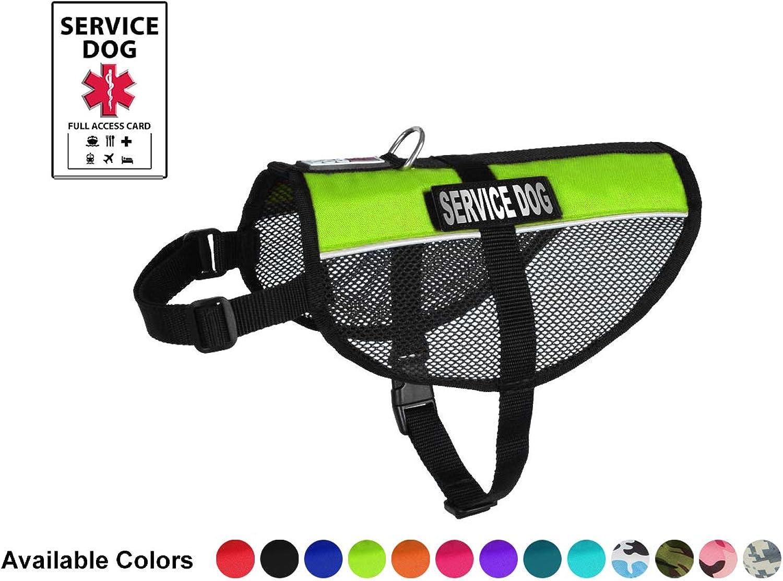 Dogline Service Dog Vest, 17 by 21Inch, Lime Green