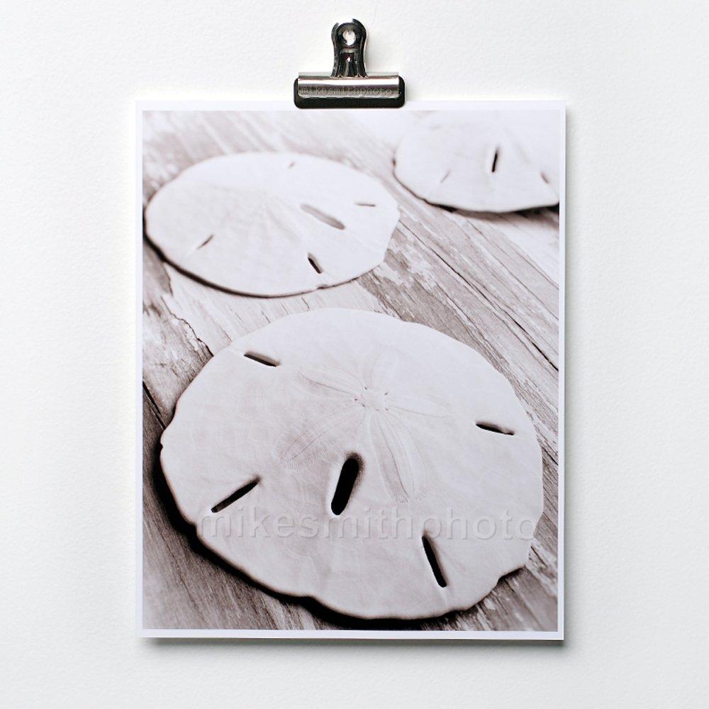 Sand Opening large release sale Dollar Art Print Black White B Nautical Sepia Decor Long-awaited Photo