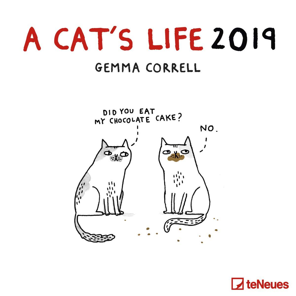CATS LIFE A 2019 Calendar - Soporte de Pared Cuadrado (30 cm x 30 cm): Amazon.es: Productos para mascotas