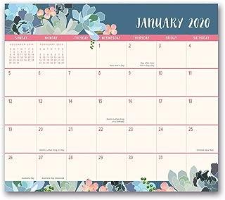 Orange Circle Studio 2020 Magnetic Monthly Calendar Pad, Succulent Paradise