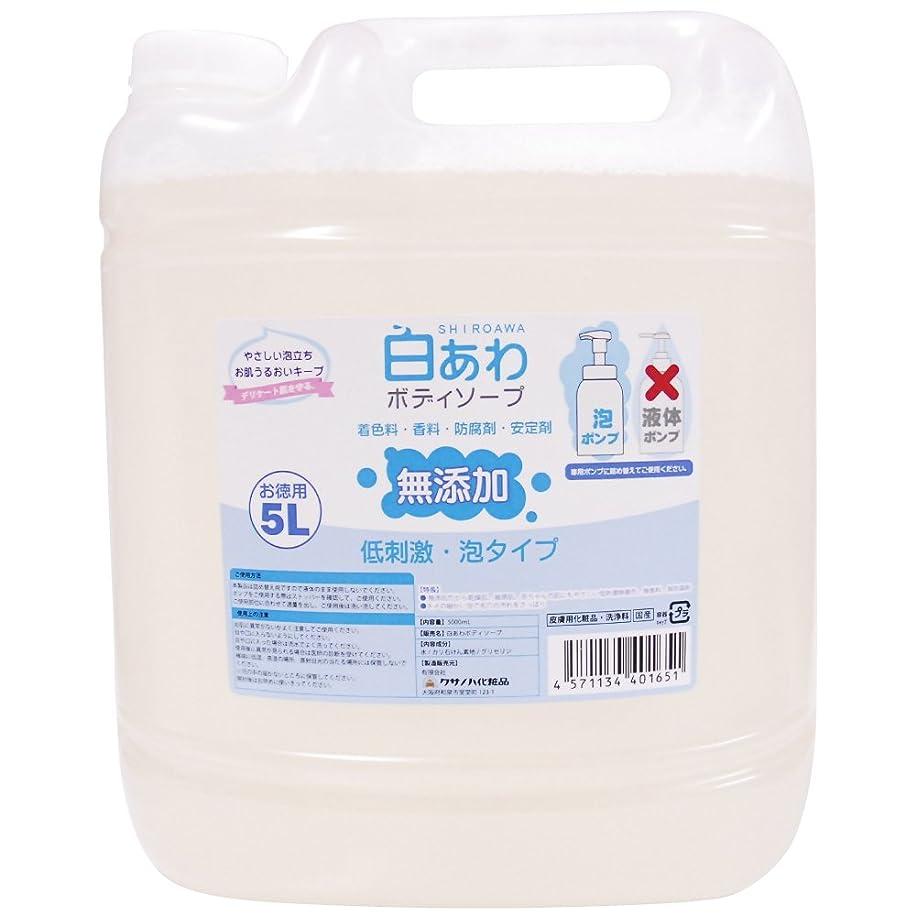 インスタンス可塑性丁寧【無添加】白あわボディソープ 詰替用 5L