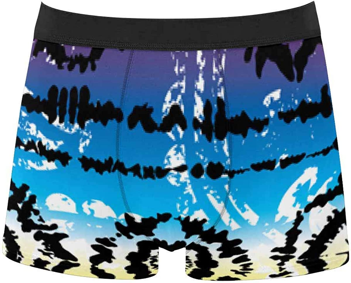 InterestPrint All Over Print Classic Fit Boxer Briefs for Men, Youth Animal Leopard Prints