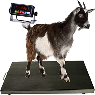 PEC Scales 700lb Livestock Animal Scale, Digital Weighing Equipment for Small to Medium Animals, Pets, Goats, Sheep, Hogs,...