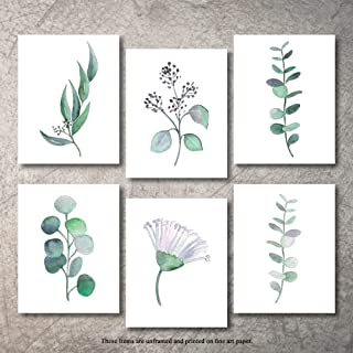 THINK! Designs Botanical Prints Wall Decor - Kitchen Art Eucalyptus Leaves Set UNFRAMED Pictures 6 Pieces Nature Floral Pl...