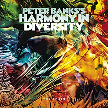 Peter Banks's Harmony in Diversity: Try Again