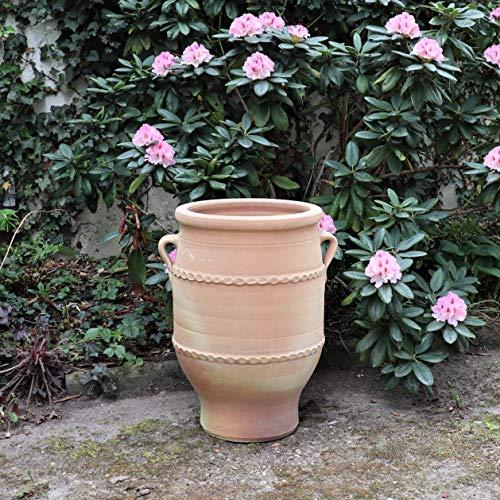 Palatina-Keramik | hohe Terracotta Amphore Blumentopf | 50 cm | Pflanzkübel, Pflanzgefäß, Balkon, Garten, Terrasse Thymus 2
