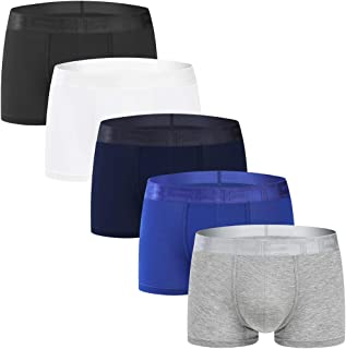 Men's Underwear Boxer Briefs 5 Pack Ultra Soft Comfy Breathable Micro Modal Trunks No Fly