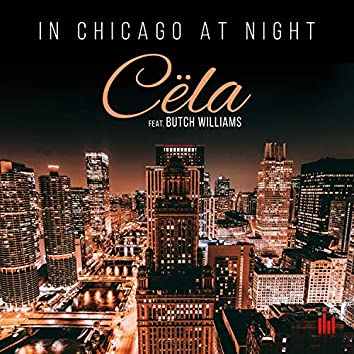 In Chicago at Night