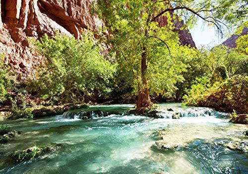 wandmotiv24 Fototapete Bach Wasser Berge Wald L 300 x 210 cm - 6 Teile Fototapeten, Wandbild, Motivtapeten, Vlies-Tapeten Fluss M4828