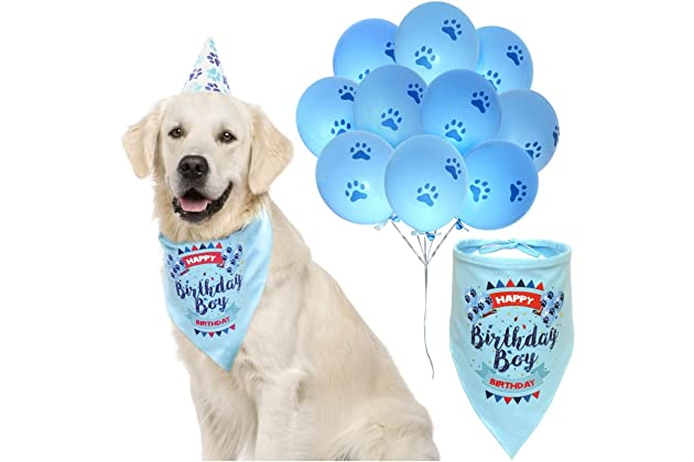 ZOOniq Dog Birthday Boy Bandana With Paw Print Party Cone Hat And 10 Balloons
