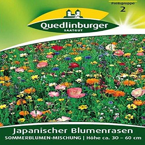 Fleur gazon japonais Mélange de fleurs d'été | Hauteur env. 30 cm – Fin de Juin – Octobre
