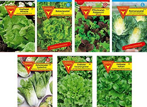 Frankonia-Samen / Samen-Sortiment / 7 Salatsorten / Kopfsalat / Bataviasalat / Pflücksalat / Romansalat /Zichoriensalat / Endivien / Feldsalat