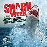2016 Shark Week Wall Calendar