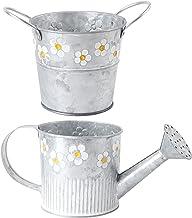 Garneck Vaso de flores galvanizado vintage de 2 peças com regador, vaso de plantas de casa, decoração de jardim de metal p...