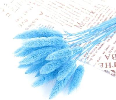 RAILONCH Conjunto de jarrón de flores secas de conejo para decoración de mesa de boda en casa o jardín (azul claro)