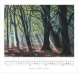 RÜGEN – Im Reich der weißen Felsen – Original Stürtz-Kalender 2017 – Mittelformat-Kalender 33 x 31 cm - 12