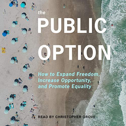 The Public Option cover art