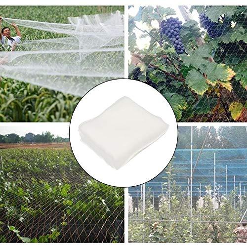 Qjifangzyp 1,5M × 12M Jardin Netting, Plante Durable légumes Fruit Fly Protecteur insectifuge Mesh Gardening Net Couverture for Pest Fly Lutte Contre Les Insectes Uniquement Vendu à