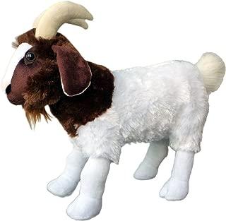 stuffed boer goat