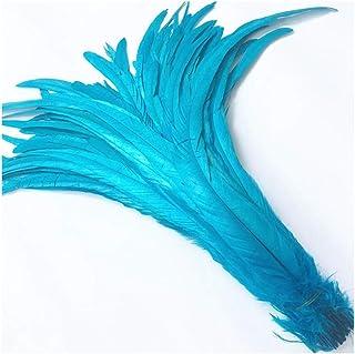 JIWEIER Plume Haute Queue cm 40-45 16-18 Pouces Artisanat Plume Naturel vêtements de décoration de Mariage Accessoires Plu...