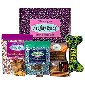 Naughty Spotty Dog Gift Box Collection, Made in The USA Dog Treats and Chews, Toys, Dispensers, Sizes from Extra Small to Large Dog, Just Treats Boxes, Gift Bags. (XS/Sm Dog 420 Baked Bone Toy)